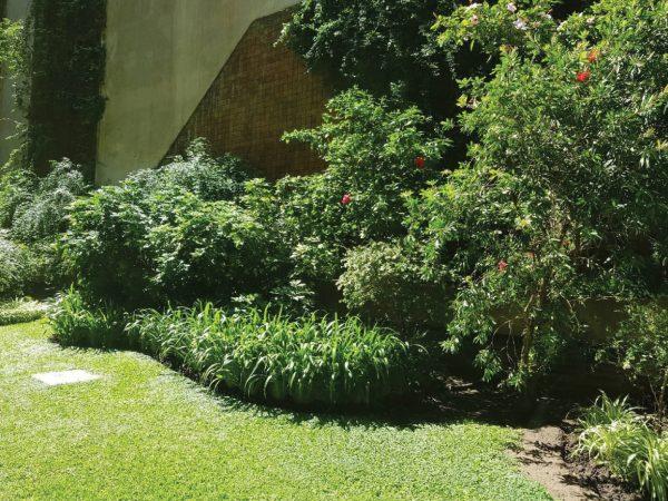 VENTA DEPARTAMENTO RECOLETA - AMPLIO Y LUMINOSO- Zona de parques y jardines - Capital Federal -